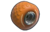 MK8 Sprite Riesig (Orange).png